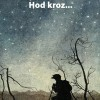 Zoran Kojčić – Hod kroz…