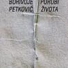 Borivoje Petković – Porubi života