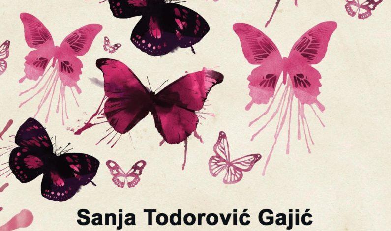 Sanja Todorović Gajić – Flert sa spoznajom
