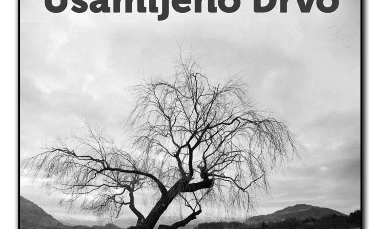 Peđa Nastasić – Usamljeno drvo