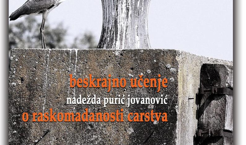 Nadežda Purić Jovanović – Beskrajno učenje o raskomadanosti carstva