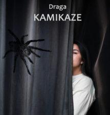 Roman i zbirka pesama Dragice Majstorović – Drage