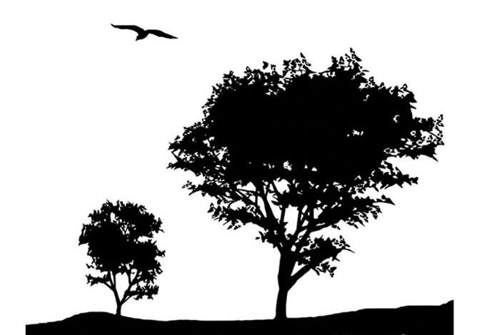 Jagoda Kljaić – Otjerane ptice